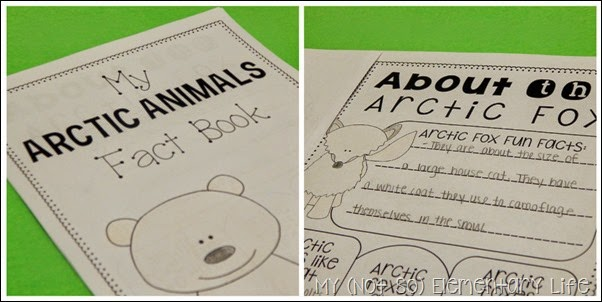 arctic animals fact booklet
