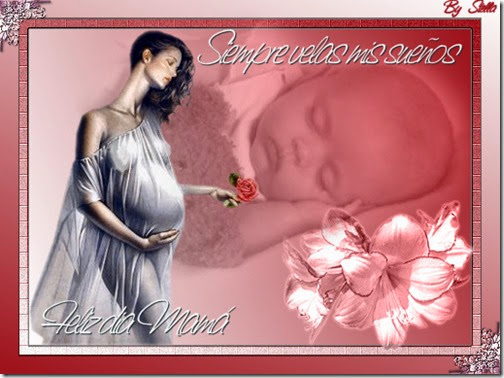 dia de las madres (8)