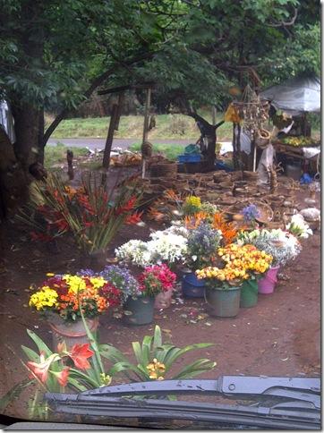 IMG-20111029-01079
