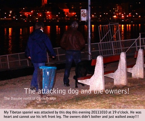 attack_20111010_owners1