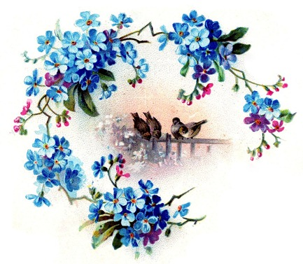 birds flowers vintage image graphicsfairy009b