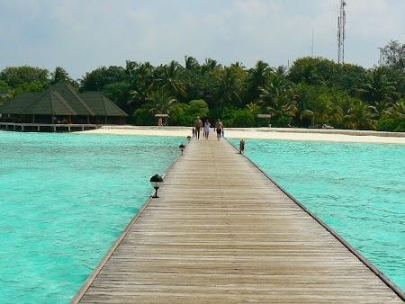 03. Paradise Island.JPG