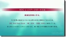 RDG - 1-4