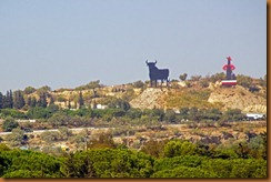 Jerez hillside
