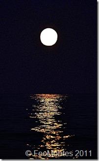 Luna de Agosto (2) copia3