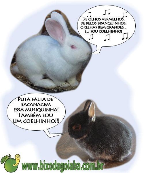 charge-coelhinho-da-pascoa