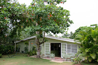 Jenni's house