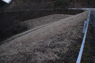 左岸より下流側の堤体を望む