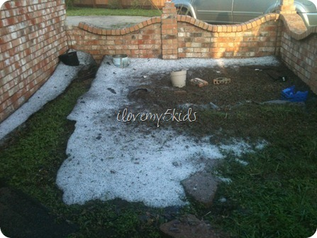 Damage in hail storm 2012