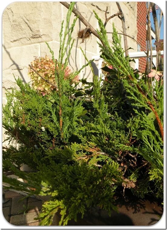 garden planters 2