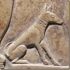 perro antiguo ateismo