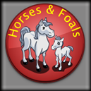 Farmville Horses and Foals
