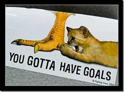 goals.jpg.