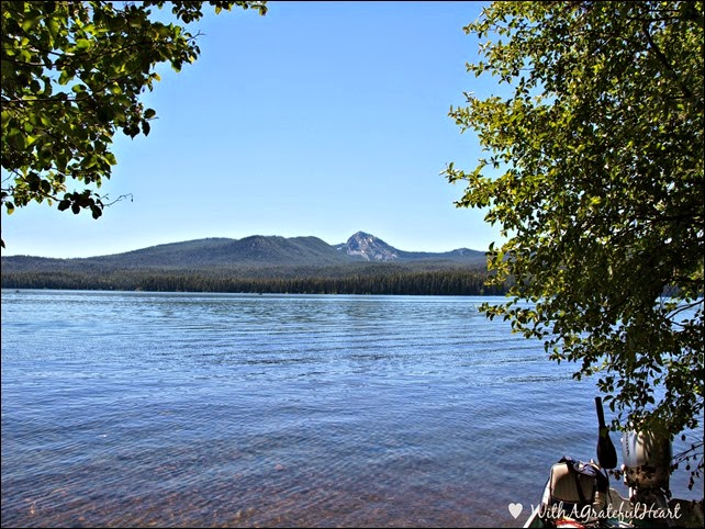 Campsite View 1