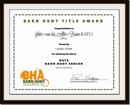 Barn Hunt Senior Certificate