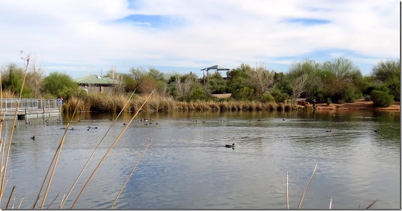 Gilbert Water Ranch