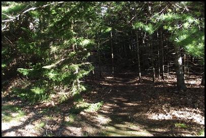 TNC hike, Pretty Marsh picnic, Bernard, Bass Harbor Light 010