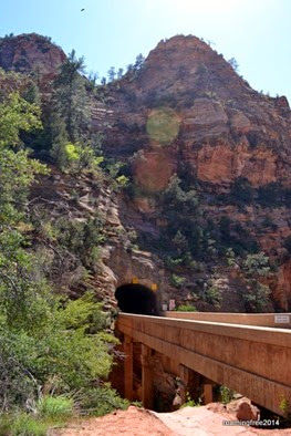 The Zion Tunnel