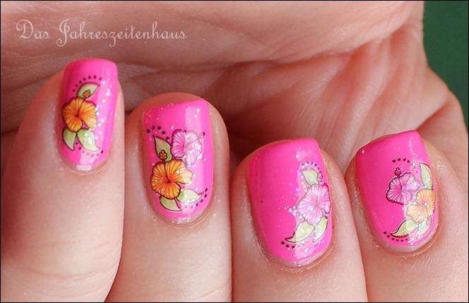 Pinker Hibiskus 5