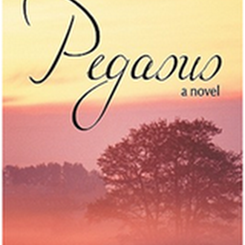Pegasus by Marilyn Holdsworth @m_holdsworth