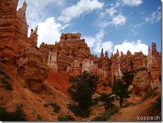 110830 NP Bryce Canyon (17)