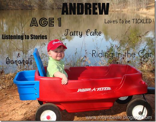 Andrew 1 Collage