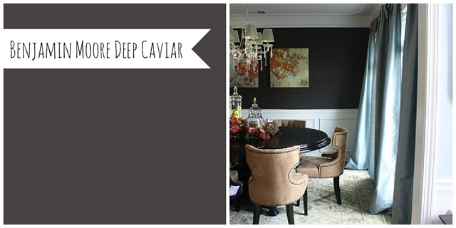Benjamin Moore Deep Caviar (View Along the Way)