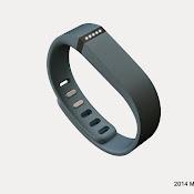 Fitbit-Flex.jpg