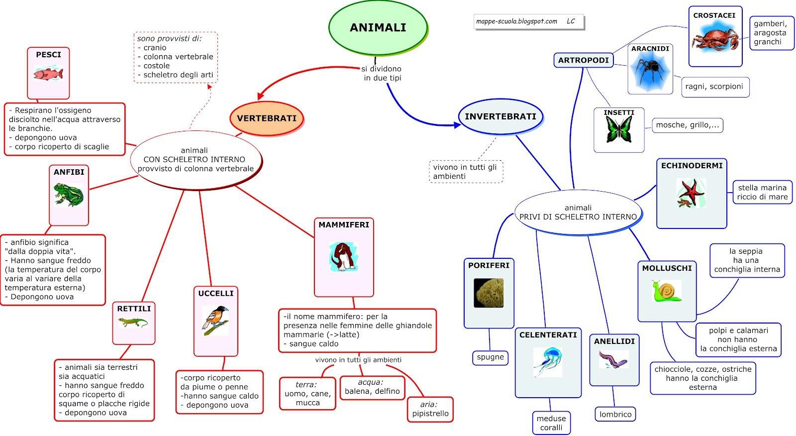 Très Siti alternativi per cercare Mappe di Scienze-Biologia-Ecologia  VZ51