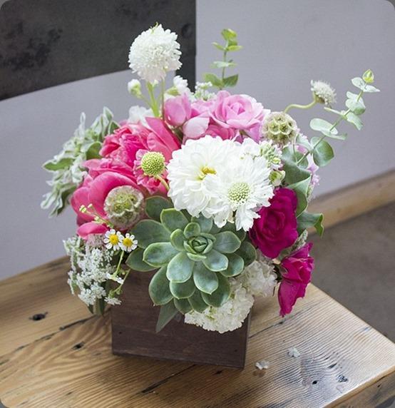 946692_539107332812409_2102255689_n primary petals