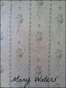 Many Waters Girlhood Wallpaper