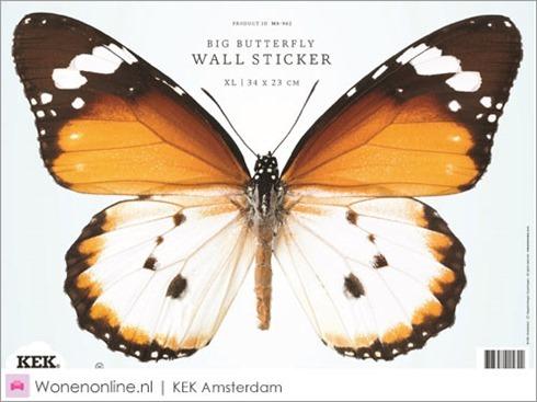 kek-amsterdam-vlinder-butterfly-muurstickers-1