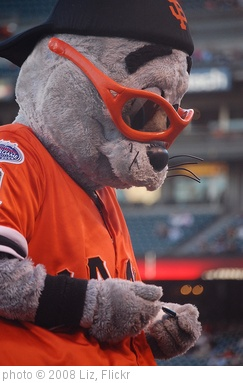 'Lou Seal' photo (c) 2008, Liz - license: http://creativecommons.org/licenses/by-sa/2.0/