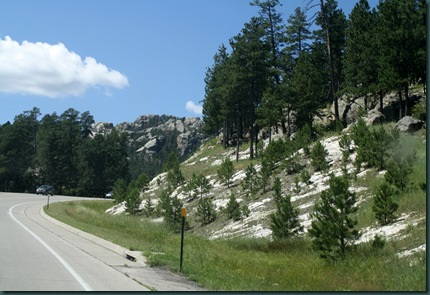 Mt Rushmore and Bear Country 007