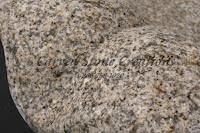 Giallo Fantasia R Granite Sample