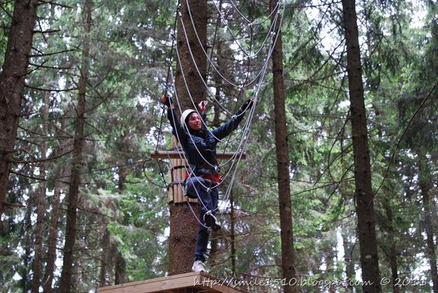 agility sugli alberi 1