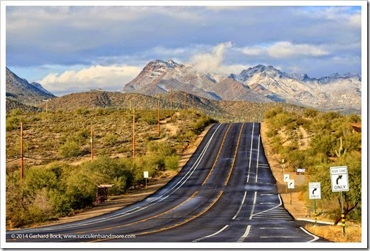 150101_TucsonMtPark_0003