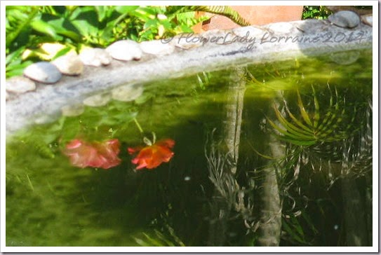 06-23-secret-garden2