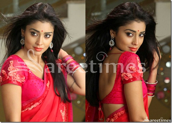 Shriya_Pink_Embroidered_Short_Sleeves_Saree_Blouse