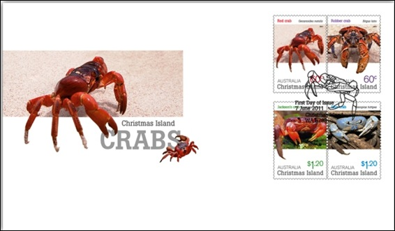 crab.jpg 1
