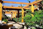 Фото 9 Iberotel Lido Sharm