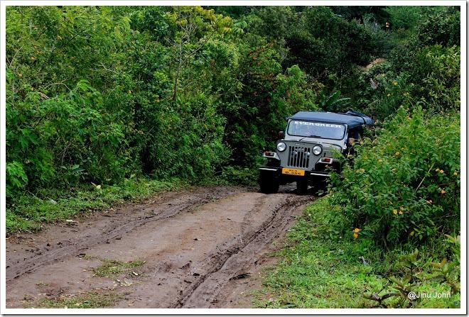 Kumily jeep Ride