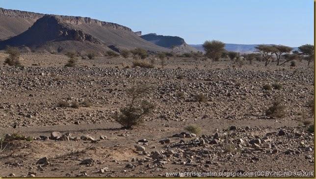 Desierto-184