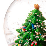 Close up of a small Christmas tree inside a spherical glass --- Image by © Royalty-Free/Corbis