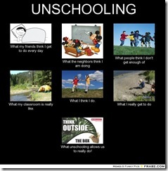 frabz-UNSCHOOLING-What-my-friends-think-I-get-to-do-every-day-What-the-062cc1