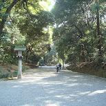 meiji park pathways in Yoyogi, Tokyo, Japan