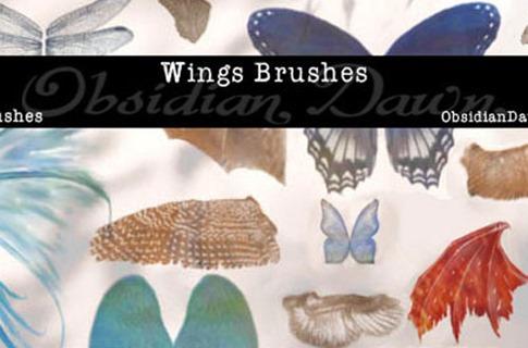 Pinceles de alas de mariposas