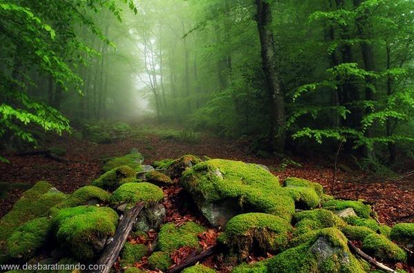 landscapes-paisagens-desbaratinando (12)