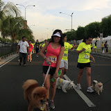Pet Express Doggie Run 2012 Philippines. Jpg (112).JPG