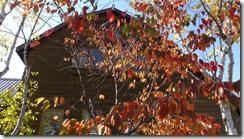 螢幕截圖 2014-12-20 14.09.15